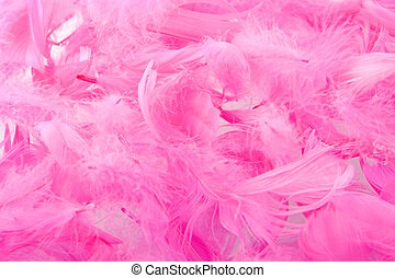 feather - a background made of pink feathers