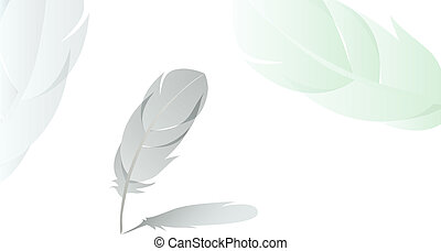 feather with shadow detailed background vector