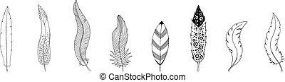 feathers., 隔離された, イラスト, 手, コレクション, 背景, インク, 引かれる, 白