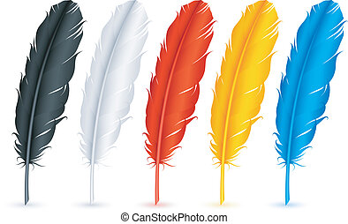 Feathers. - Set of 5 color feathers.