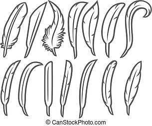 feathers thin line icons set
