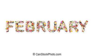 """february."""", text, animation, monat, kalender, """"floral"""