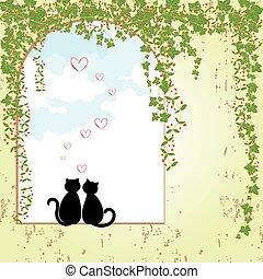 fechando, primavera, gato
