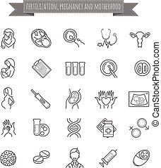 fecundación, vector, maternidad, conjunto, embarazo, iconos