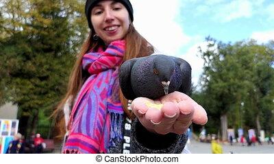 fed, kobieta, slo-mo, dłoń, uśmiechanie się, gołębica