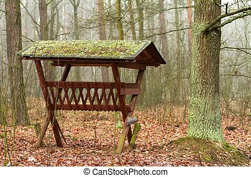 feeder for animals in the woods