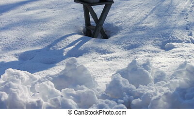 Feeder for birds in winter park