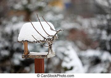 feeder, vinter, fugl