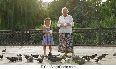 Feeding Birds In A Park