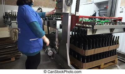 Feeding bottles to the conveyor for further bottling of wine