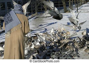 Feeding Hungry Birds