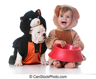 feeding the dog and cat