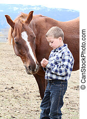 Feeding treats - Young boy in blue feeding his horse treats