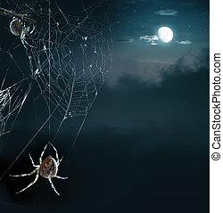 feestje, spinnen, in, halloween avond