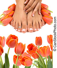Pampered feet and hands with beautiful tulips