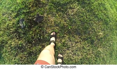 Feet in sandals walking on earth and green grass