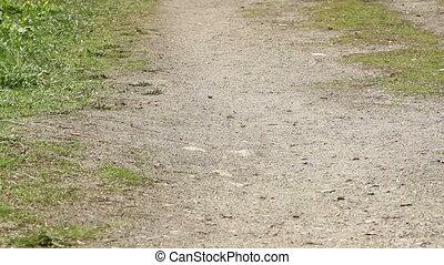 feet that run along path