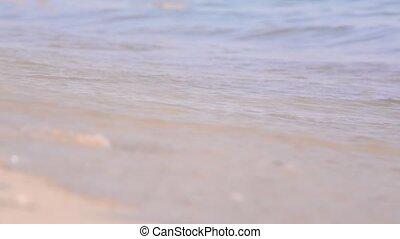 Feet, walking barefoot on wet sandy beaches.