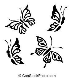 fehér, fekete, pillangók, gyűjtés