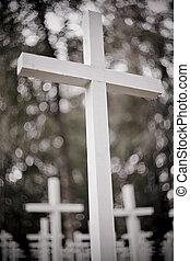fehér, hadi, cemetery., keresztbe tesz