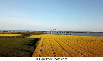 Fehmarn Bridge and Rapeseed Field Aerial View