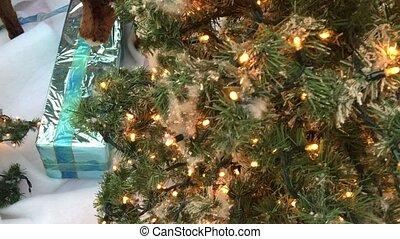 feier, weihnachtsbaum