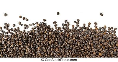 feijões, branca, experiência., café, lote