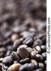 feijões café, -, bokeh