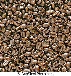 feijões café, seamless, experiência.