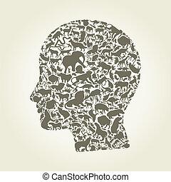fej, állat