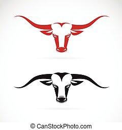 fej, kép, vektor, háttér, bika, fehér