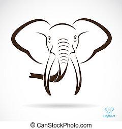 fej, vektor, kép, elefánt