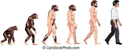fejlődés, táncos, majom
