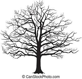 fekete, árnykép, üres fa, ., vektor, ábra