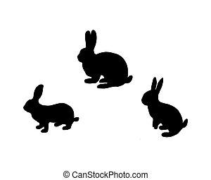 fekete, fehér, árnykép, három, bunnys