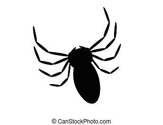 fekete, pók
