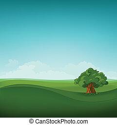 feld, landschaftsbild