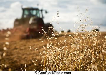 feld, traktor, pflügen