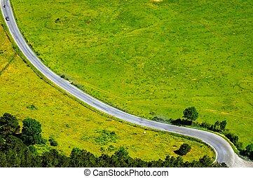 Felder, grün, Straße