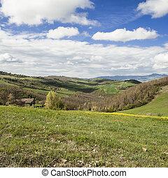 felder, pastures., landschaftsbild, italienesche