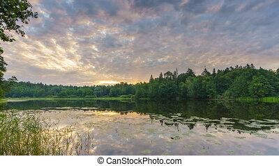 felett, timelapse, tó, felhős, erdő, napkelte