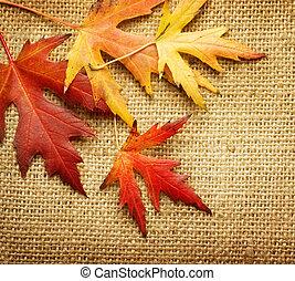 felett, zöld, háttér, zsákvászon, ősz