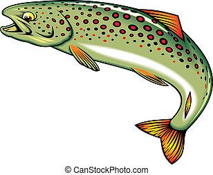 felhajtó, fish