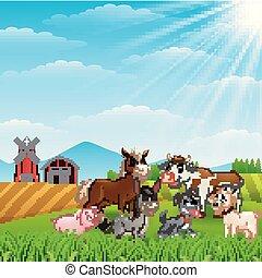 felice, animali, a, fattoria, su, luce giorno