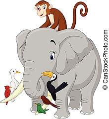 felice, animali, cartone animato