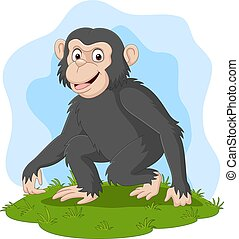 felice, erba, cartone animato, scimpanzé