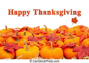 felice, ringraziamento, foglie, arancia, augurio, zucche, cadere