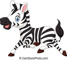 felice, zebra bambino, correndo