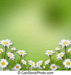 felicitación, ramo, invitación, flores, o, tarjeta