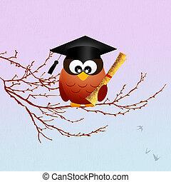 felicitaciones, para, graduación